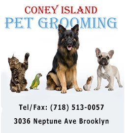 Coney Island Pet Grooming