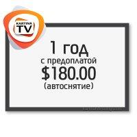 Годовая премиум подписка Kartina TV с предоплатой